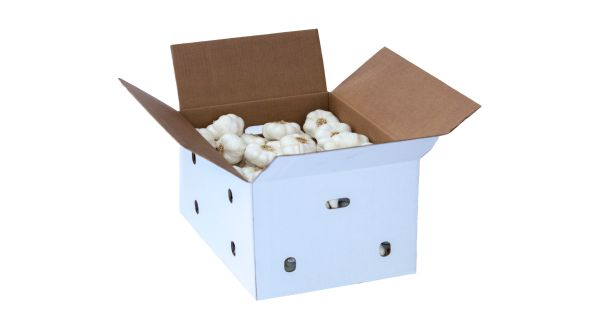 Caja 30 Lb Big Garlic