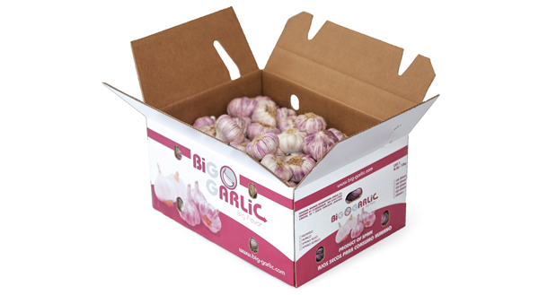 KARTON BIG GARLIC